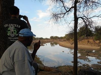 Searching for wildlife at the Limpopo River