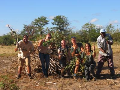 Conservation volunteers work alongside staff in Botswana