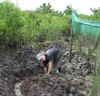 Digging the canal at Thung Prasan