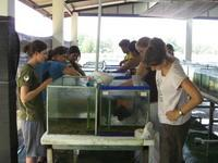 Cleaning tanks at the fisheries department