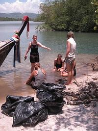 Efforts of a mangrove clean-up