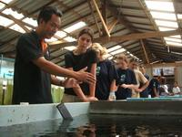 Tour of the Krabi fisheries department