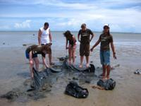 Removing plastic at AoNamMao beach