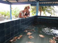 Visiting Phuket aquarium