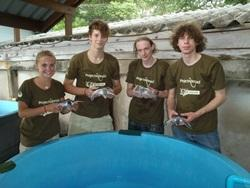 Volunteers with turtles