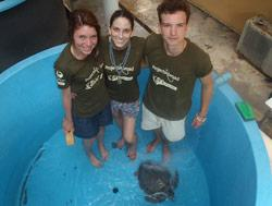 Cleaning Turtle Pools