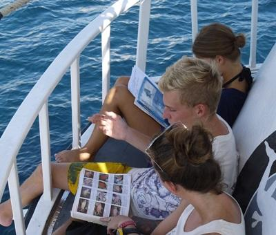 Projects Abroad volunteers study the various fish species that can be found off the coast of Krabi, Thailand