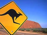 Why not join our Australia programme?