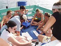 Reef monitoring training