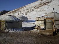 My Mongolian home