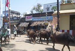 Street outside the clinic