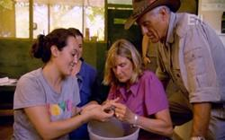 A volunteer shows Sue and Jack how to mark baby turtles before they are released