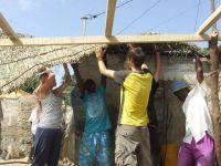 Volunteers Work with the Street Children of Senegal