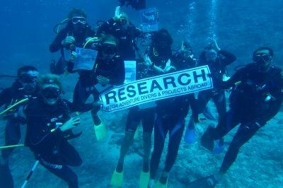 Dive teams inform global information on shark behavior.