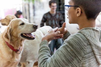 A patient works with a dog on the canine therapy placement, Fundación Jingles in Córdoba, Argentina.