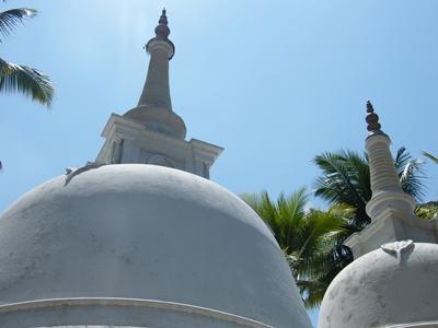 Wirtschaftspraktika in Sri Lanka
