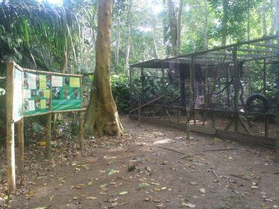 unser ökologischer Reservat Taricaya gewinnt Preis