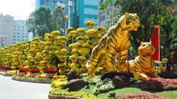 Zum Neujahrsfest wird Hanoi aufwendig geschmückt