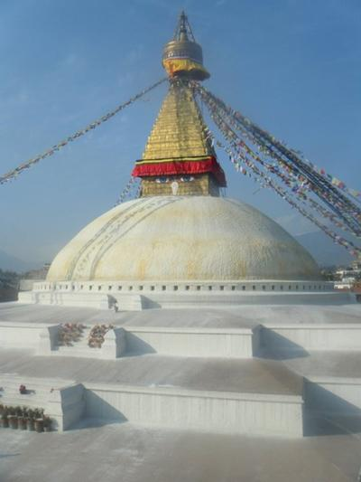 Naturschutz - Projekt in Nepal