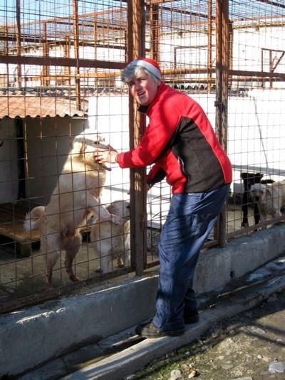 Tierpflege in Rumänien