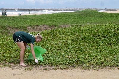 Projects Abroad Freiwillige in Sri Lanka unterstützten für einen Tag dabei, die tollen Küsten des Landes von Müll zu befreien und wurden Teil des 'National Coastal Cleaning Programme'