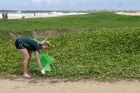 Projects Abroad organisiert eine Aufräumaktion am Strand in Panadura, Sri Lanka