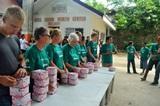 Schutz gegen das Denguefieber auf den Philippinen│Projects Abroad