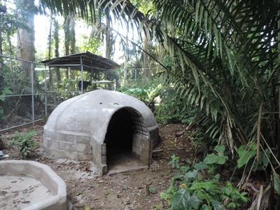 Projects Abroad Freiwillige bauten eine 300m2 Areal für die befreiten Brillenbären, mit großen Pools und schattigen Höhlen im Taricaya Ecological Reserve.