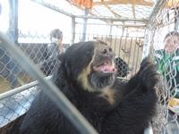 Tierrettung aus einem illegalen Zoo in Peru