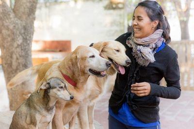 Eine Therapeutin streichelt Hunde im Hundetherapie – Projekt  in Córdoba, Argentinien