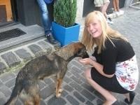 En lærerig måned med bjørne og hunde i Brasov