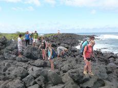Frivillige ved kysten på Galapagos