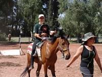 En fortælling om hesteterapi i Bolivia