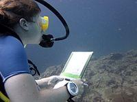 Beretning om min oplevelse på dykkerprojektet i Thailand