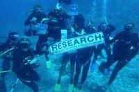 Hajprojektet i Fiji fejrer 3 års fødselsdag