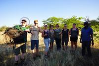 Frivillige fjerner dyrefælder i Botswana