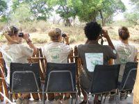 Conservation volunteers in Southern Africa contribute to annual bird survey