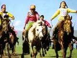 Happy 800th Birthday Mongolia!