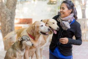 Una terapeuta junto a perros en el proyecto de Terapia Canina, en la Fundación Jingles en Córdoba, Argentina
