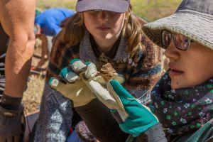 Una voluntaria y un miembro del personal, examinan un hueso