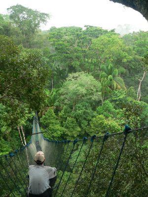 Puente colgante en Peru