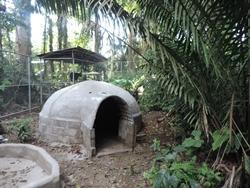 Projects Abroadin Luonto & Ympäristö vapaaehtoiset rakensivat 300m2:n kokoiset aitaukset pelastetuille silmälasikarhuille Taricayan luonnonsuojelualueella. Aitauksissa on isot vesialtaat ja varjoisia luolia.