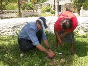 Mission spéciale en Jamaïque