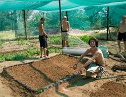 Ecovolontaires travaillant dans le jardin