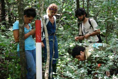 Etudes de biodiversité sur le terrain