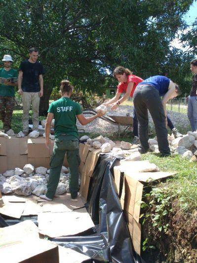 Volontaires en mission écovolontariat au Costa Rica en action
