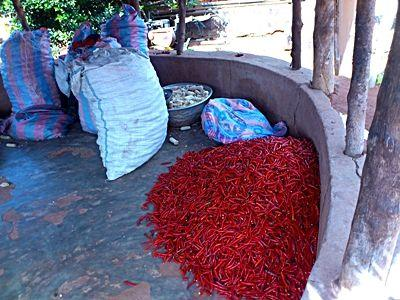 Sacs de piments rouges
