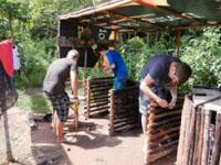 Volontariato ambientale in Cambogia: c'è bisogno di volontari a dicembre!