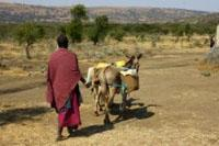 Un nuovo obiettivo per il progetto Acqua e Igiene in Tanzania