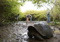 Il progetto di volontariato ambientale alle Galapagos festeggia un anno